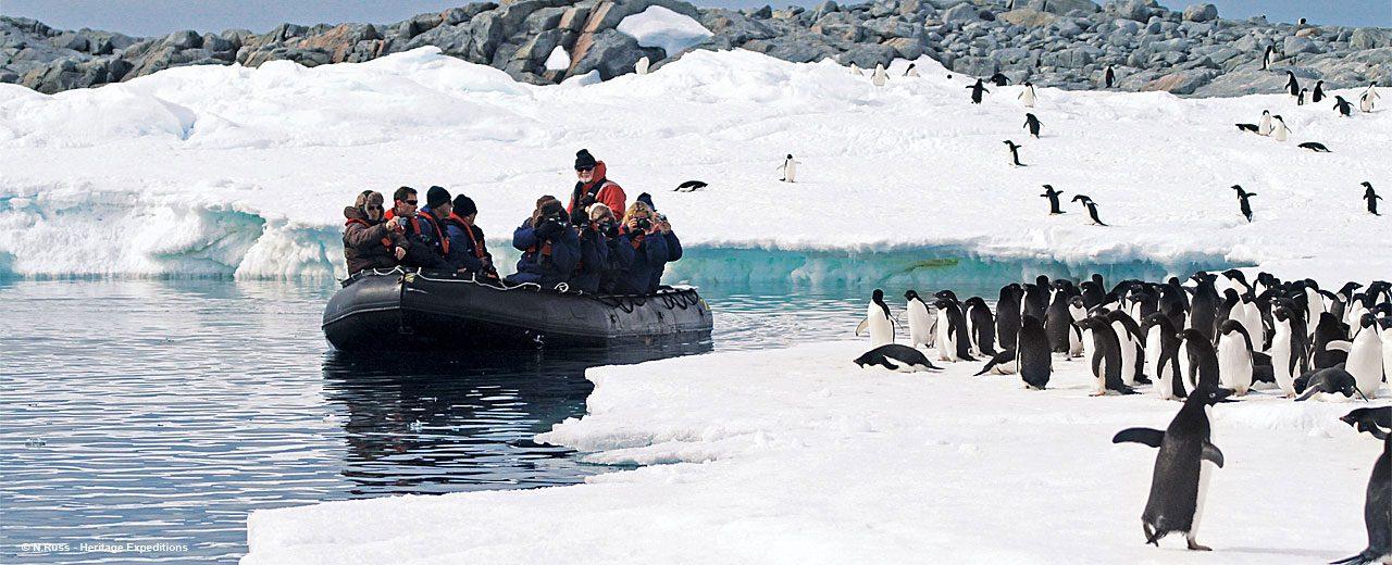 Antarctica_shooting-penguins