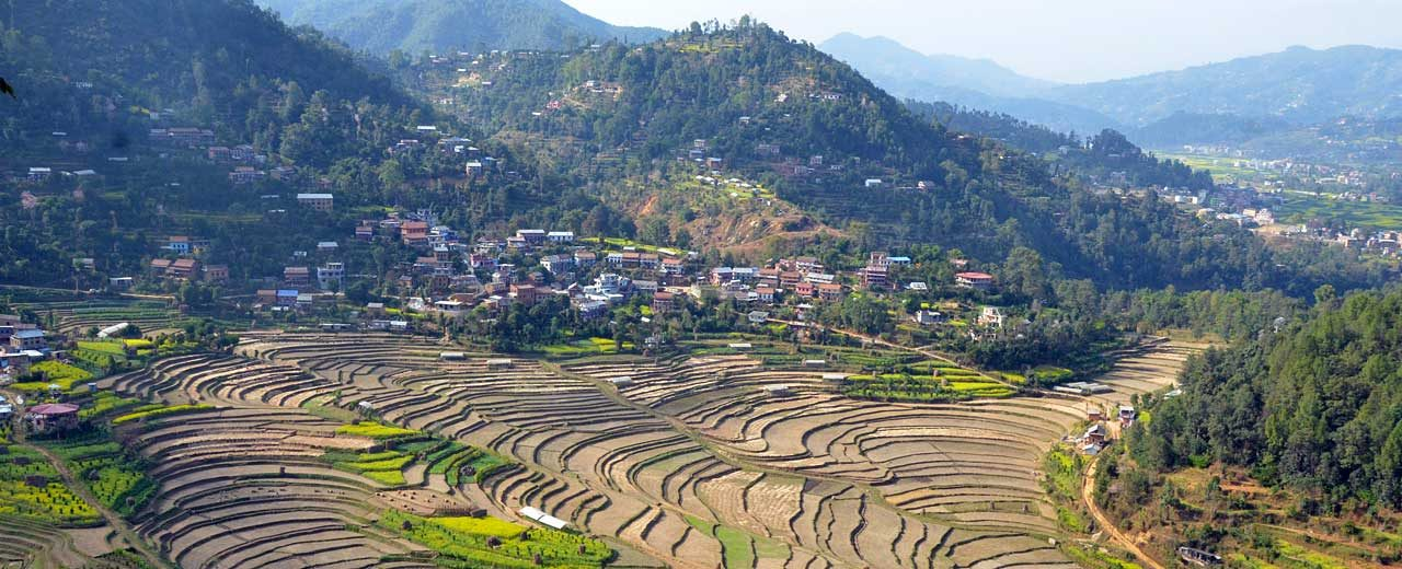 Kathmandu Valley, Rice paddies